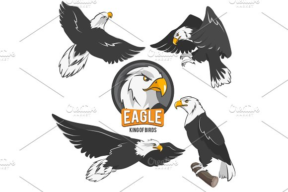 Set Of Cartoon Eagles In Different Action Poses