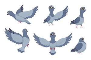 Vector collection of cartoon pigeons