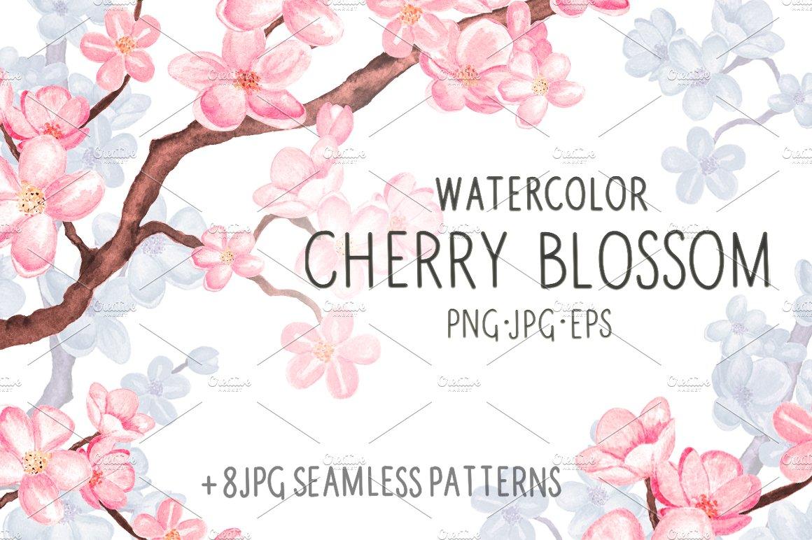 Watercolor cherry blossom ~ Illustrations ~ Creative Market