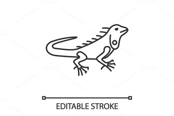 Iguana Linear Icon