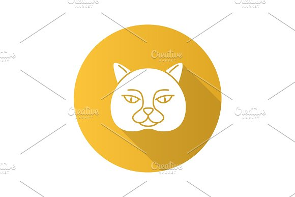 British Shorthair Cat Flat Design Long Shadow Glyph Icon