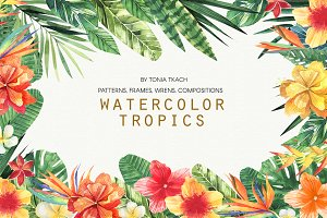Watercolor Tropics