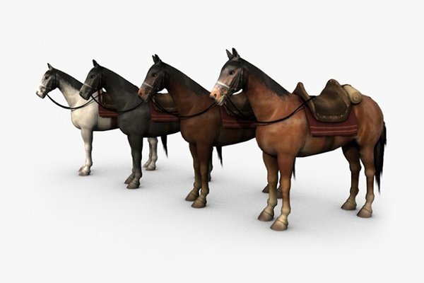Animal: Bondiana_3D - Horse with saddle
