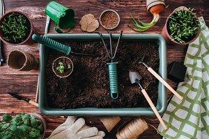 Garden tools top