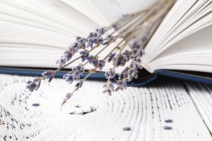 bouquet of dry lavender with books
