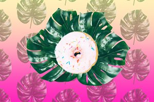 donut and palms