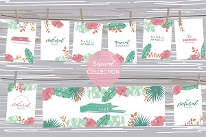 12 cute tropical design cards2#