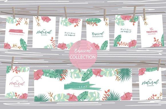 12 Cute Tropical Design Cards2#