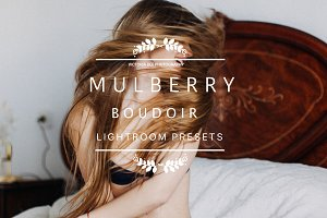 Desktop Lightroom Presets MULBERRY
