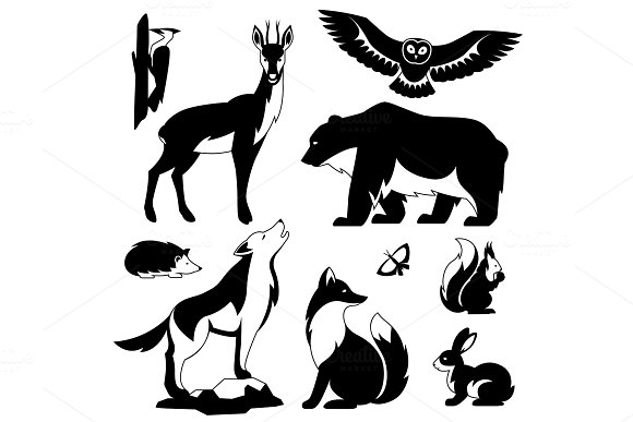Set Of Woodland Forest Animals And Birds Stylized Illustration