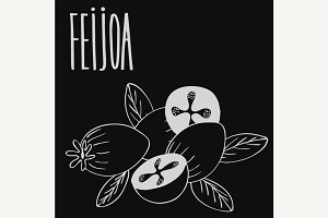Chalkboard guava fruits or feijoa