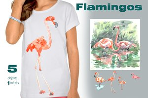 Flamingos on a walk