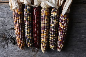 Flint Corn on Rustic Wood Table