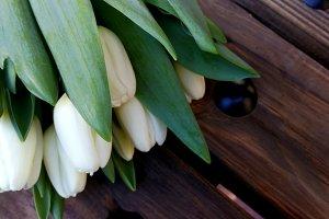White tulips on dark wood
