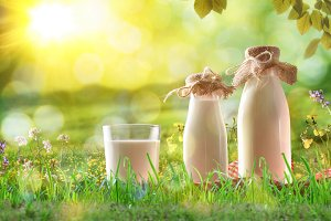 Glass with milk in nature