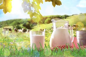 Glass and jug with milk on the grass