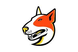 Bull Terrier Dog Mascot