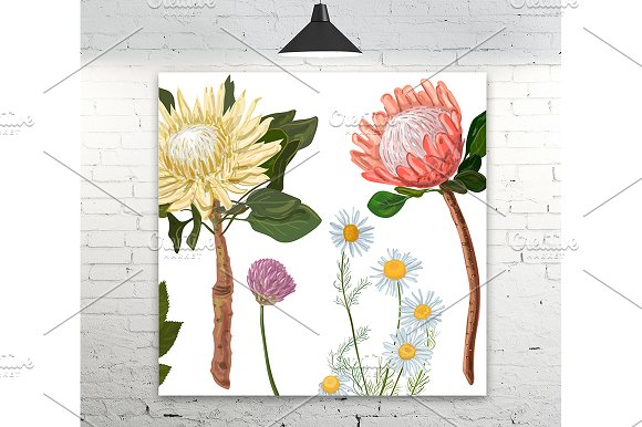 Protea And Chamomile Flowers