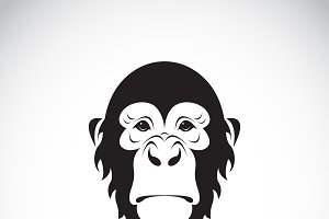 Vector of monkey face design. Animal