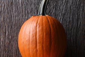 Carving pumpkin on display