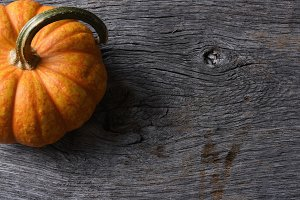 Pumpkin Still Life on Rustic Wood