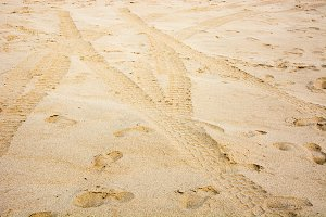 Wheel track and foot-print on sand