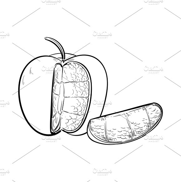 Illustration Of Fruit