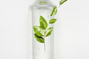 Nature water with green leaves