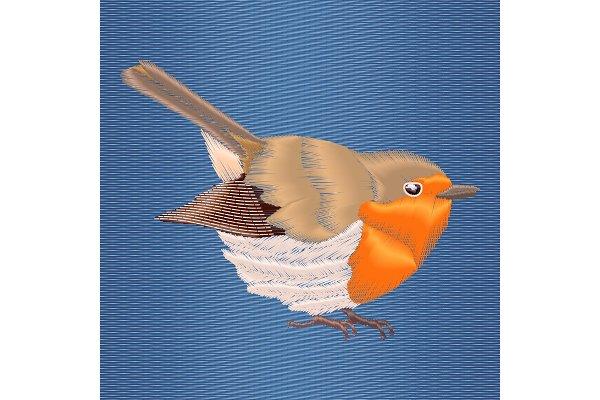 Embroidery robin bird