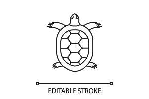 Tortoise linear icon