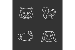 Pets chalk icons set