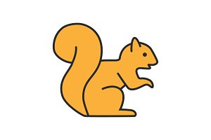 Squirrel color icon