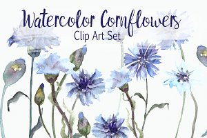 Watercolor Cornflower Clip Art Set