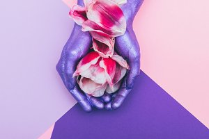 hands with tulip flower with petals