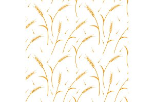 Whole grain, natural, organic background for bakery package, bread products.
