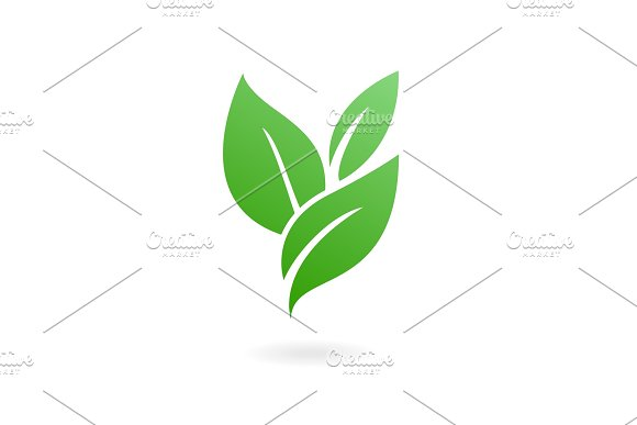 Flat Leaves Icons Vector Illustration