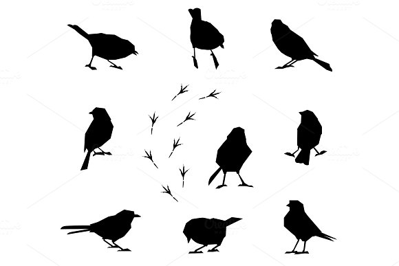 A Set Of Silhouettes Of Winter Birds