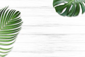 Tropical leaves on wood background