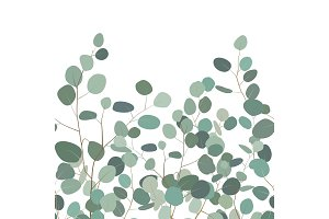 Seamless pattern with eucalyptus. Hand painted floral ornament with silver dollar eucalyptus branches on white background. Vector