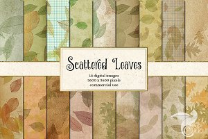 Scattered Leaves Backgrounds