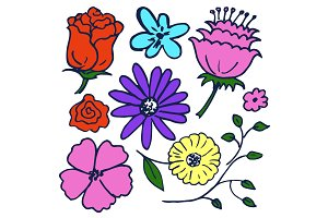 Massive of Lovely Flowers Vector Illustration