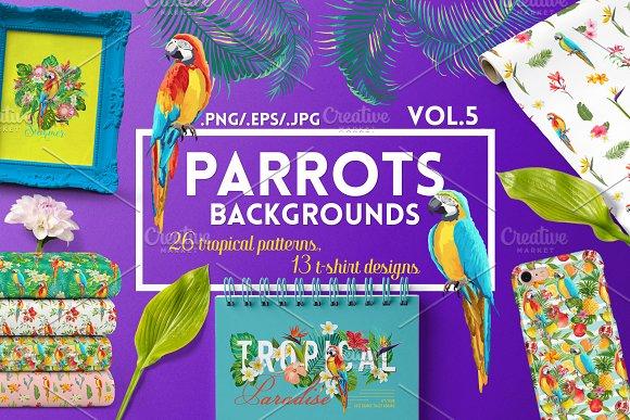 Parrots Tropical Patterns T-shirts