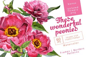 Wonderful peonies PNG watercolor set