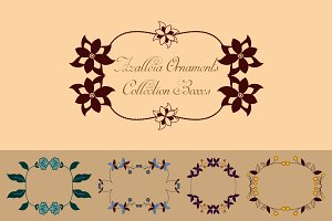 Azalleia Ornaments Vector Boxes