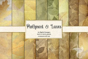 Parchment and Leaves Digital Paper