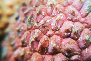 Macro photo lychee litchi fruit food
