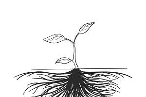 Illustration of development concept