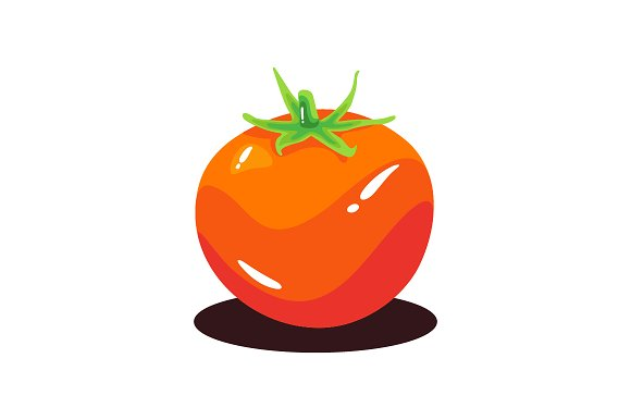 Fresh Realistic Tomatoes Vector Illu
