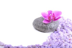 Spa accessories on the light background