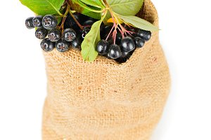 Aronia berry in the bag